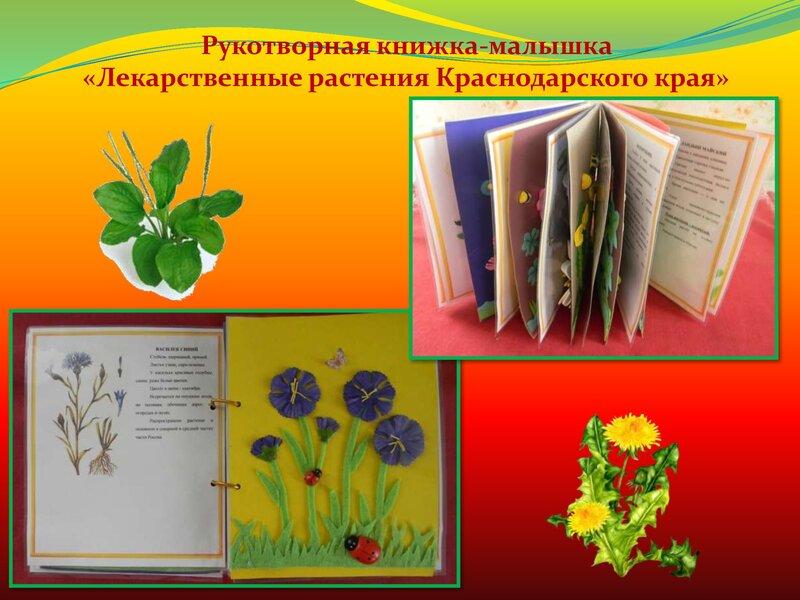 Цветочный калейдоскоп. Слайд 8
